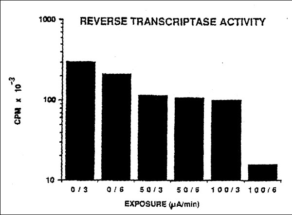 Results of a representative reverse transcriptase assay